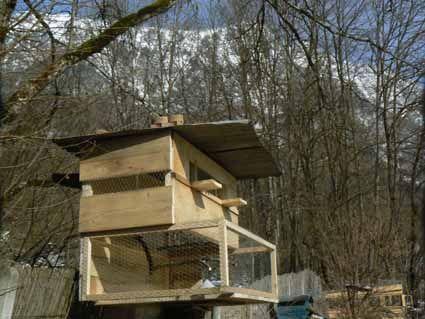Nouveau pigeonnier petit pigeonnier - Construire un pigeonnier plan ...